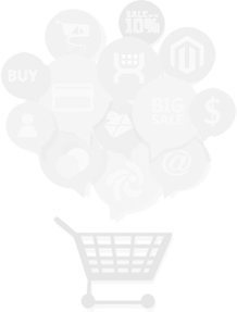Magento Services Optimized for Higher Conversions
