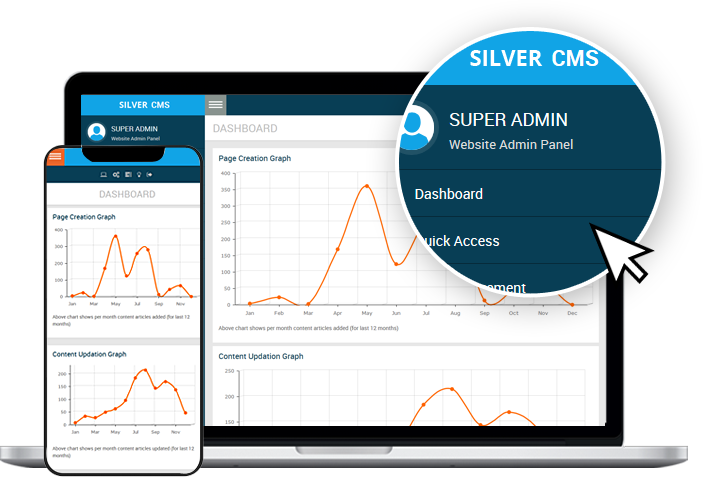 silver CMS