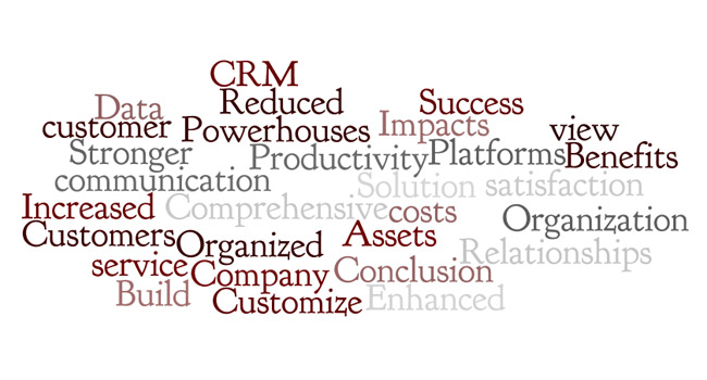 CRM: A Solution for Success