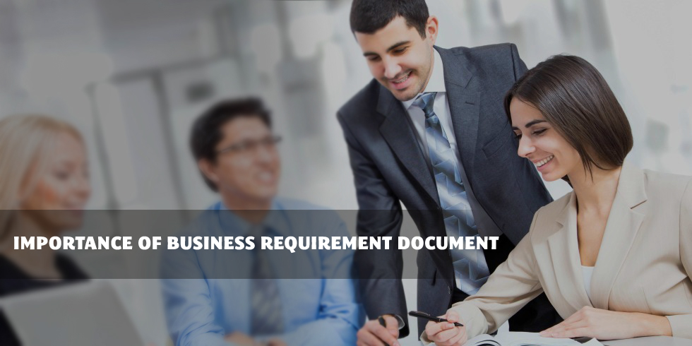 Importance of Business Requirement Document