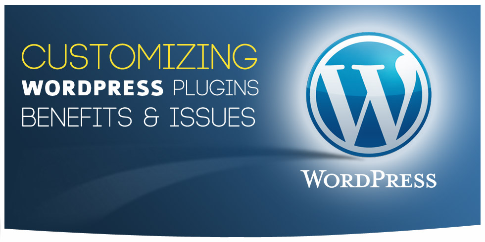 Customizing WordPress Plugins Benefits & Issues