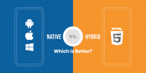 Native vs. Hybrid Apps: What to choose in 2019?