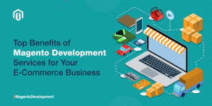 Five Reasons Why Your E-Commerce Business Needs Magento Development