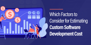 Which Factors to Consider for Estimating Custom Software Development Cost