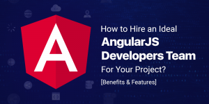 How to Hire an Ideal AngularJS Developers Team for Your Project?