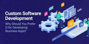 Custom Software Development- Why Should You Prefer It for Developing Business Apps?