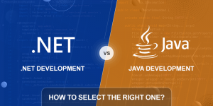 ASP.NET vs Java: How to Select the Right One?